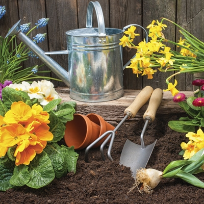 Home & Garden Supplies