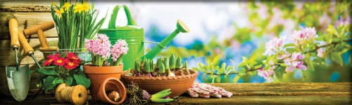 April is National Gardening Month!