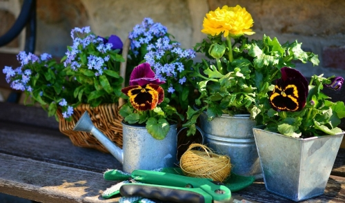 Don't Put Away Your Gardening Tools
