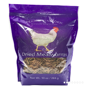 Pecking Order-Mealworms