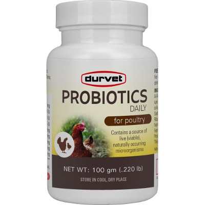 Probiotics Daily for Poulty