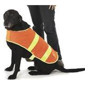 Spot 'N Trot Visibility Dog Safety Vest