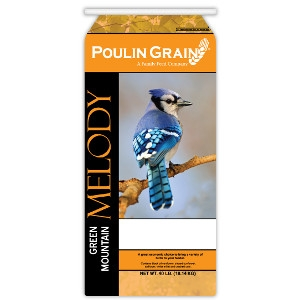 Green Mountain Melody Bird Food