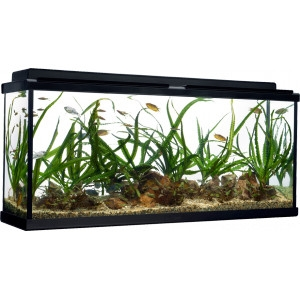 30% Off All Boxed Aquarium Starter Kits
