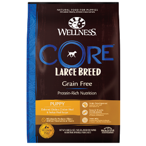 Wellness Core Large Breed Puppy 22 lb
