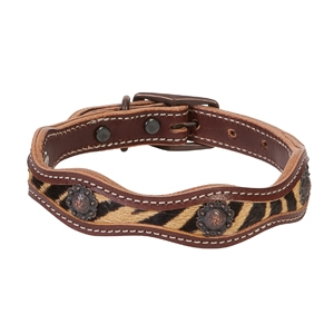 Safari Dog Collar