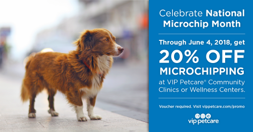 National Microchip Month VIP Petcare Savings!