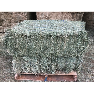 Just In A New Shipment Of Timothy Hay!