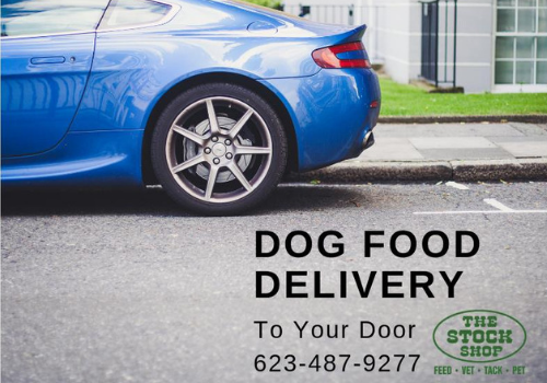 Dog Food Delivery
