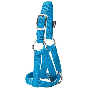 Small Hot Blue Goat Halter