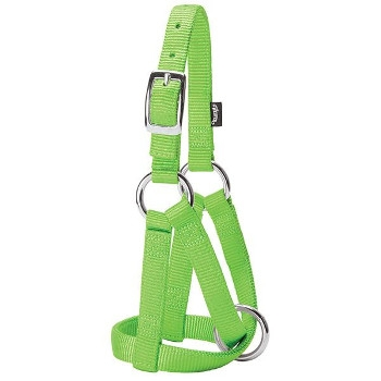 Medium Lime Green Goat Halter