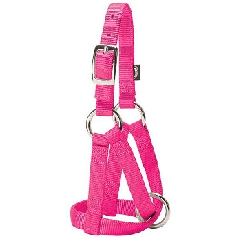 Medium Hot Pink Goat Halter