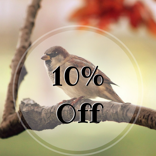10% Off Wild Bird Food