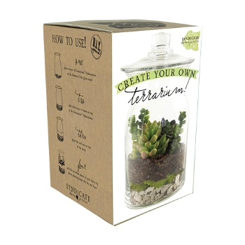 Create Your Own Garden Terrarium Kit by Syndicate Home and Garden