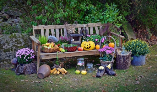 Planning Your Fall Annual Planting
