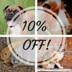 10% off Reptile of your Choice