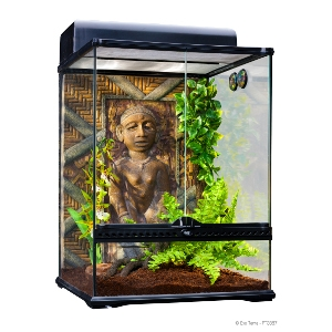 Exo Terra Congo Rainforest Habitat Kit