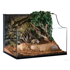 Exo Terra Turtle Medium Terrarium