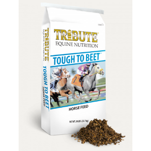 Kalmbach Tribute Tough to Beet