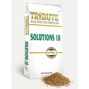 Kalmbach Tribute Solutions 10