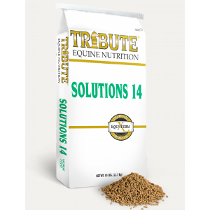 Kalmbach Tribute Solutions 14