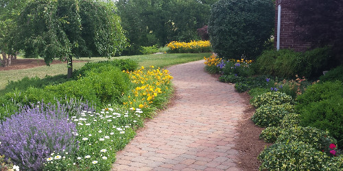 Brick paving with mixed flower beds