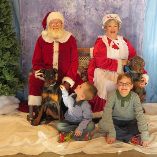 Pet Photos with Santa - Colchester