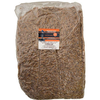 Mealworms To Go Dried Wild Bird Food, 11 lbs.