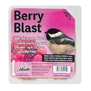 Heath Berry Blast Songbird Suet 11.25 oz.