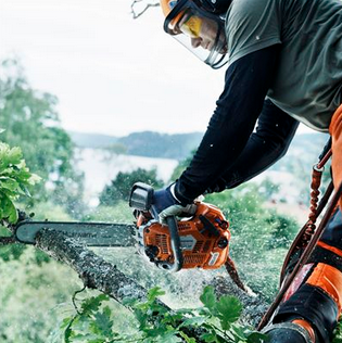 $50 to $75 Rebate Husqvarna Chainsaw