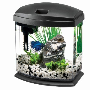 LED MiniBow Desktop Aquarium Kit