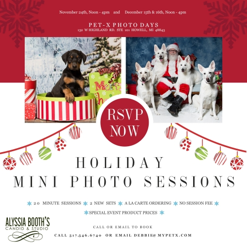 Holiday Mini Photo Sessions at Pet-X