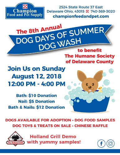Dogs Days Of Summer Dog Wash
