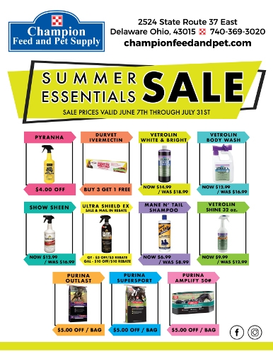 Summer Essentials Sale!