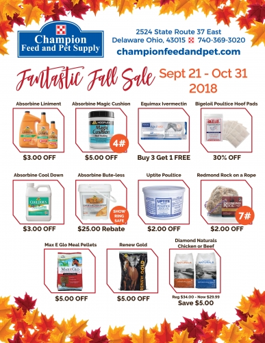Fantastic Fall Sale