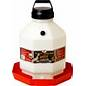 Little Giant Poultry and Game Bird Waterer, 5 gallon