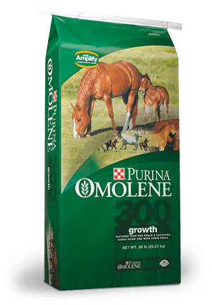 Purina Omolene 300 Growth Horse Feed