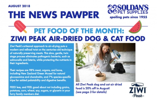August 2018: The News Pawper