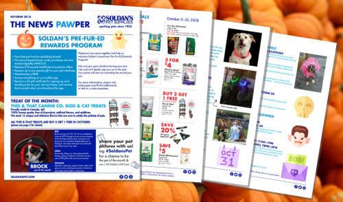 October 2018: THE NEWS PAWPER