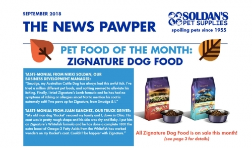 September 2018: The News Pawper