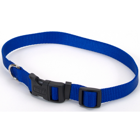 15% off any leash or collar