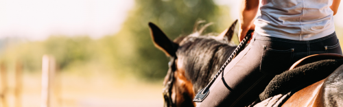 ​Join us at Bonny Brook Riding Club
