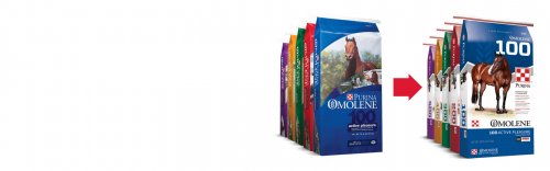 Omolene Horse Feeds