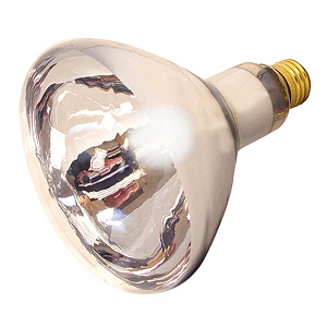 Clear Heat Lamp Bulb, 250watt