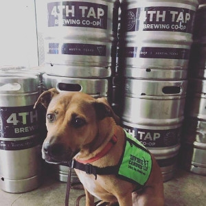 4th Tap - Barks for Beers Kick Off