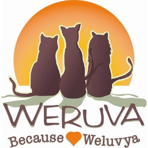 20% Off All Weruva Cat Cans