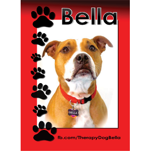 Bella, the Therapy Dog