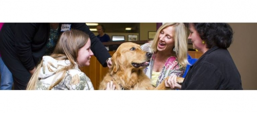 Therapy Dog Training 12/4