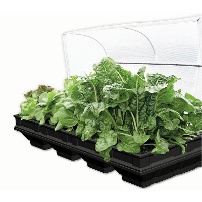 Large Raised VegePod Garden Bed with Garden Cover