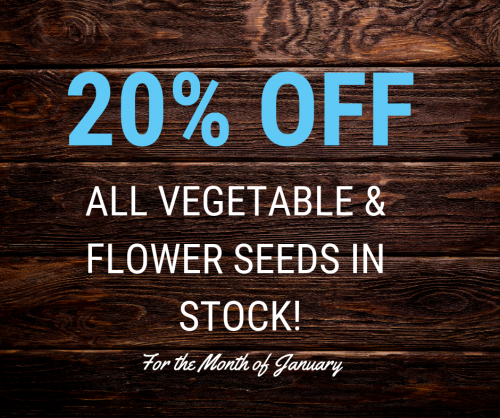 20% Off All Vegetable & Flower Seeds in Stock!